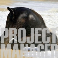 project manager square